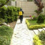 شرکت سمپاشی نانوفناوران بهداشت تهران
